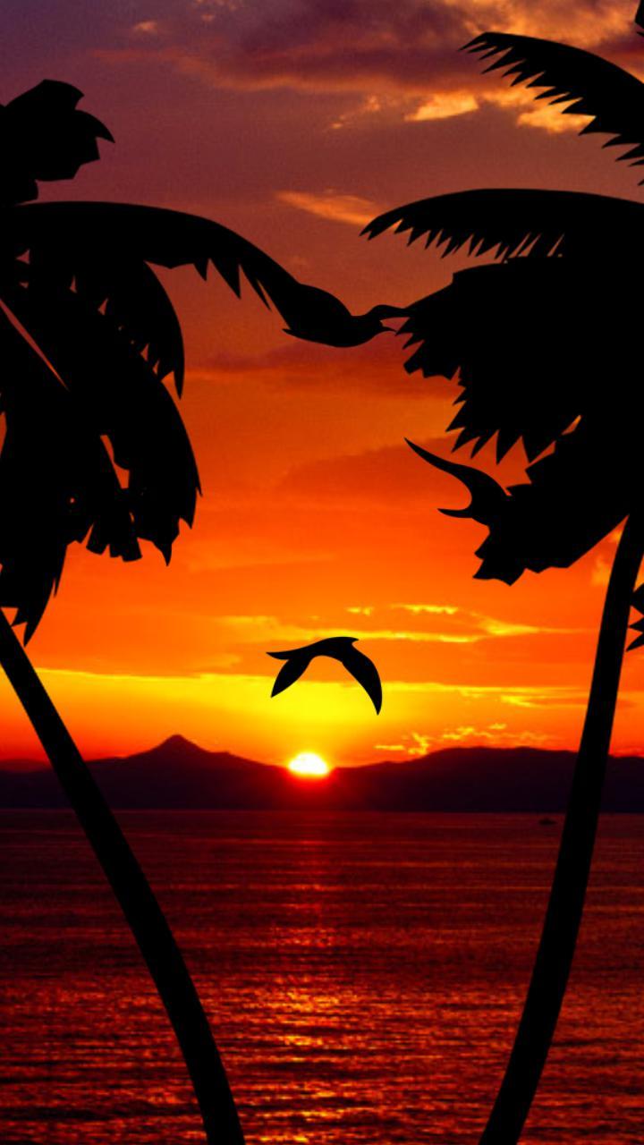 Parallax sunset