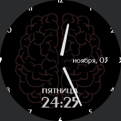 Brain optima