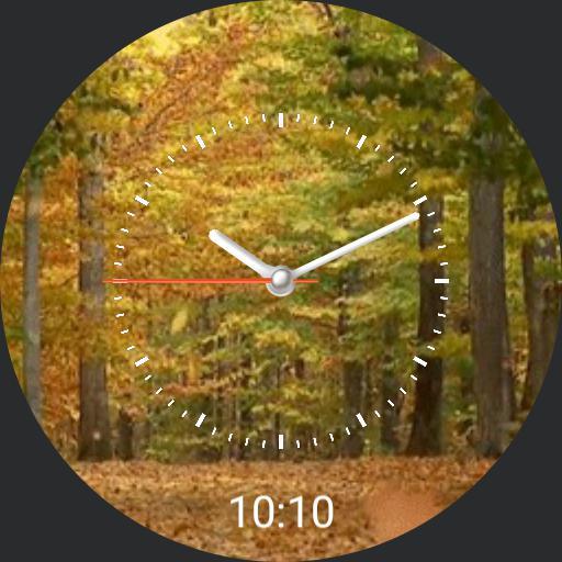 Fallwatch V.1