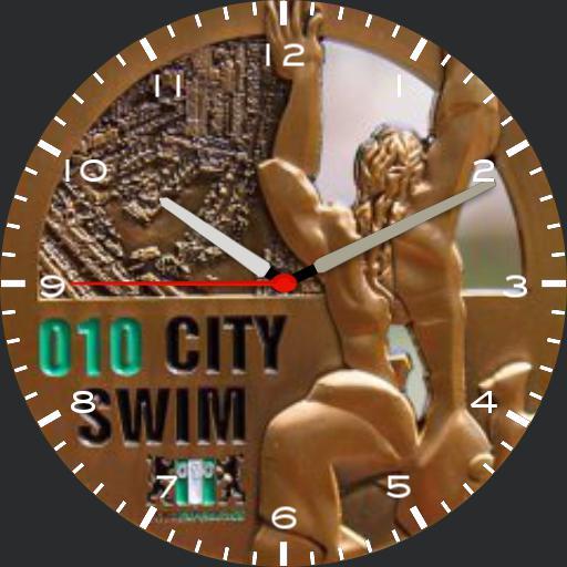 010 City Swim Watch v 3.0