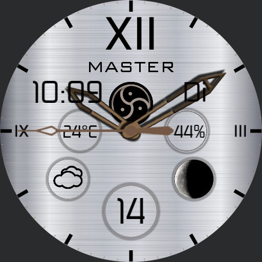 Master of Bdsm siver