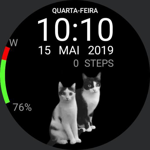Cats v1.1