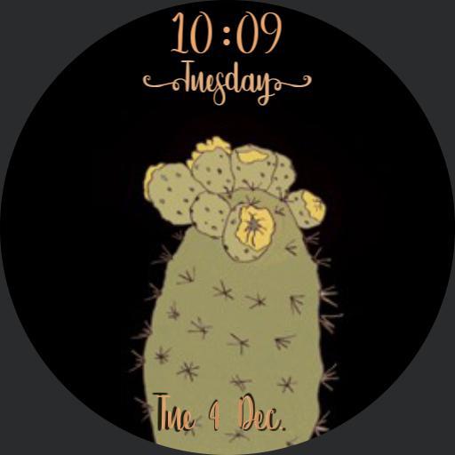 Cactus Tuesday