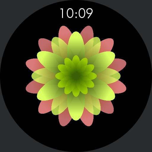 Round Plant Flower
