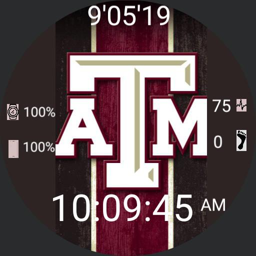 Texas AM