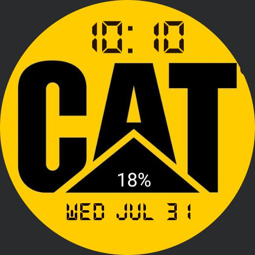 Cat Yellow