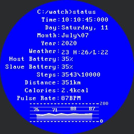 MS-DOS terminal