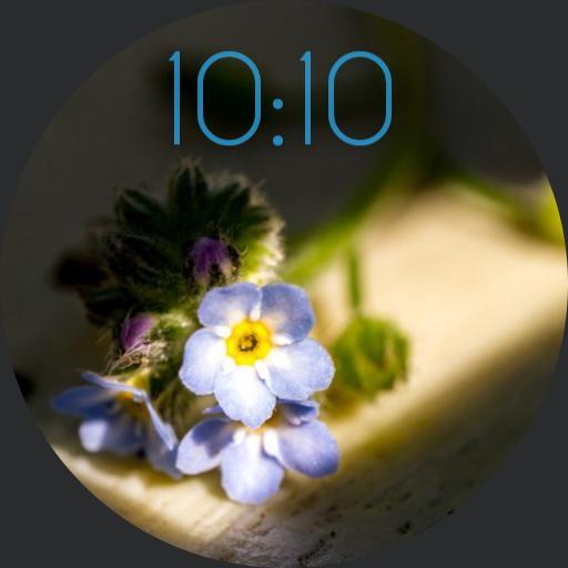 Delicate Flowers Minimal Digigital