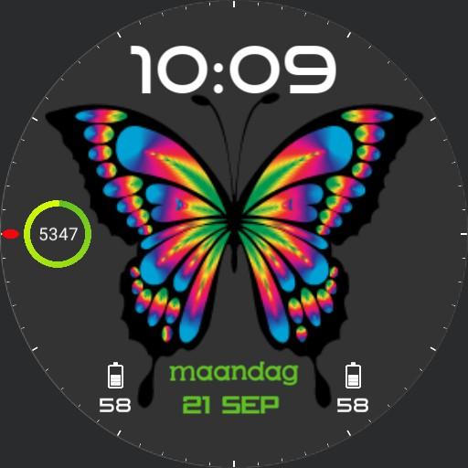 Vlinder v0.1_2020