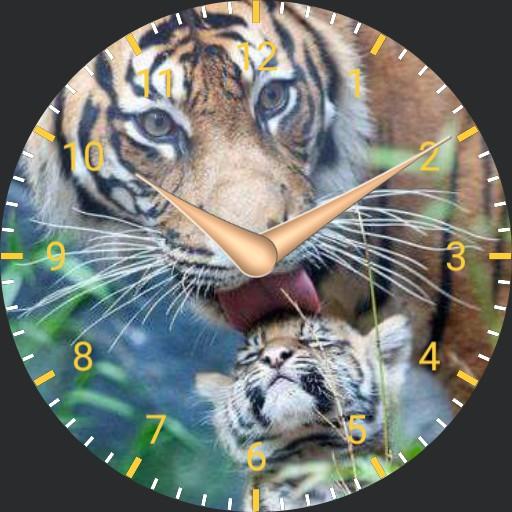 tiger Copy plwren