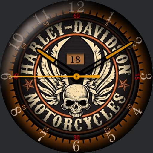 Vintage Skull  Harley Davidson