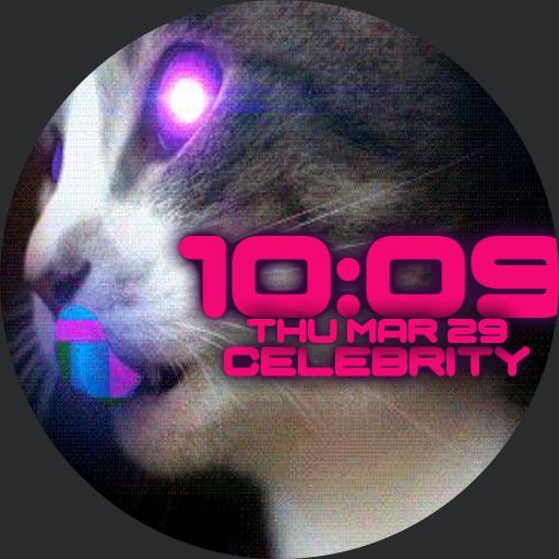 woot cat
