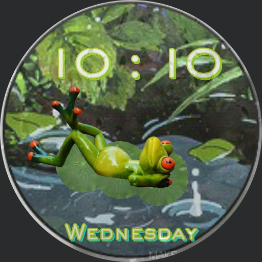 Frog in a Lilly Pond