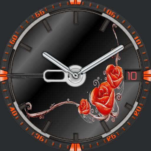 Die Rose 1