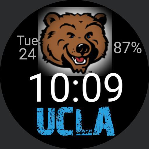 UCLA Analog