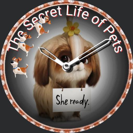 update the secret life of pets
