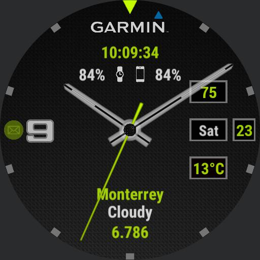 Garmin full info  gray, green, white