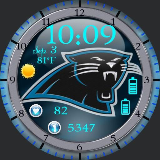 Carolina Panthers Copy