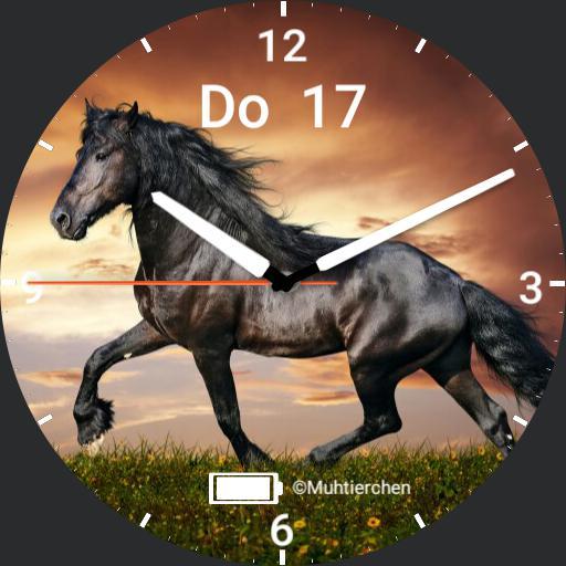 Pferd Copy