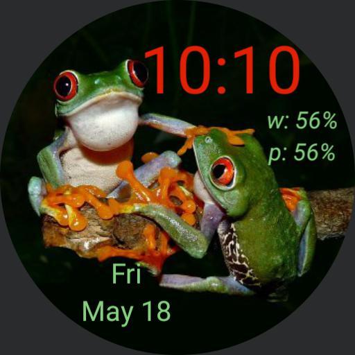 cjb fighting frogs