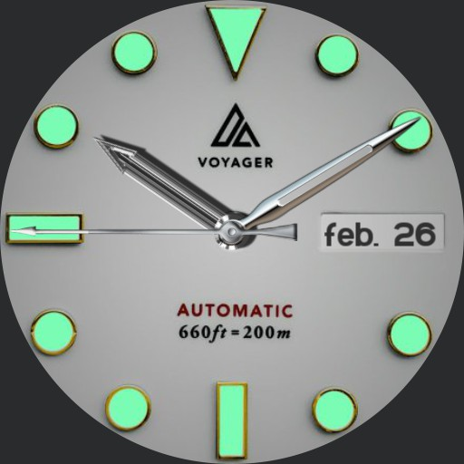Voyager Silver Timer