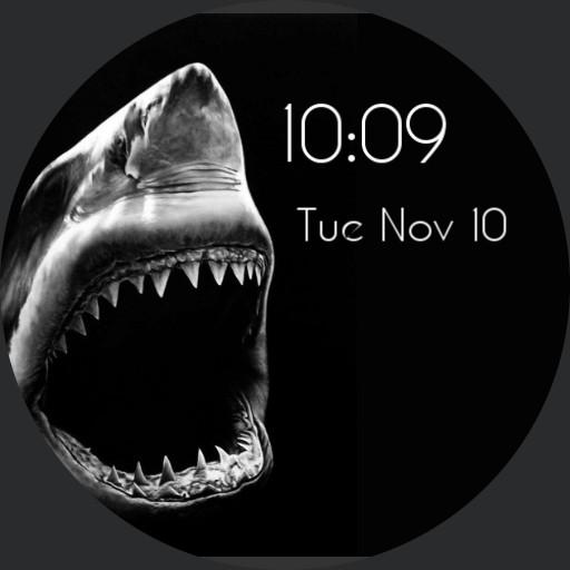 4k Shark