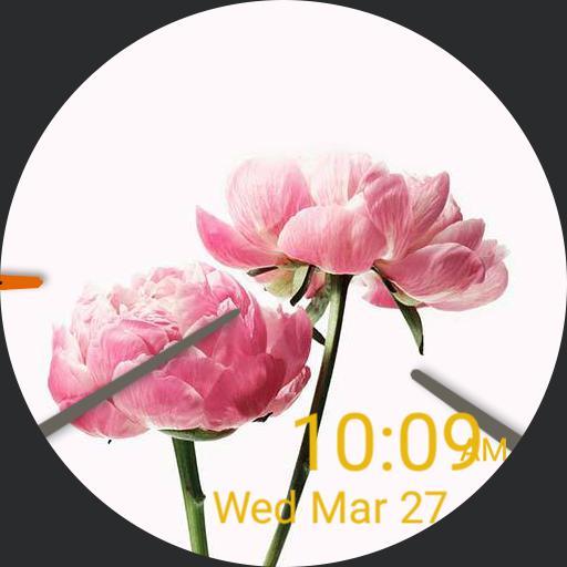 dodi flowers