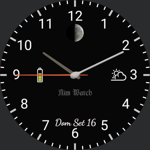 Nim Watch 1