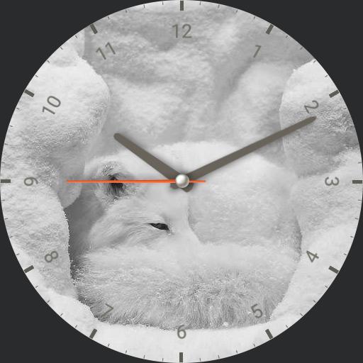 Nspz_73 White Fox