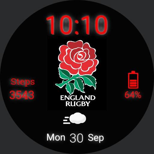 England Rugby Face