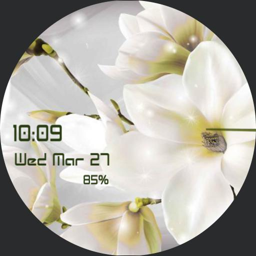 dodi,white flowers