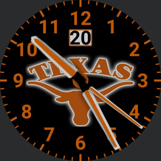 Texas Longhorn 2