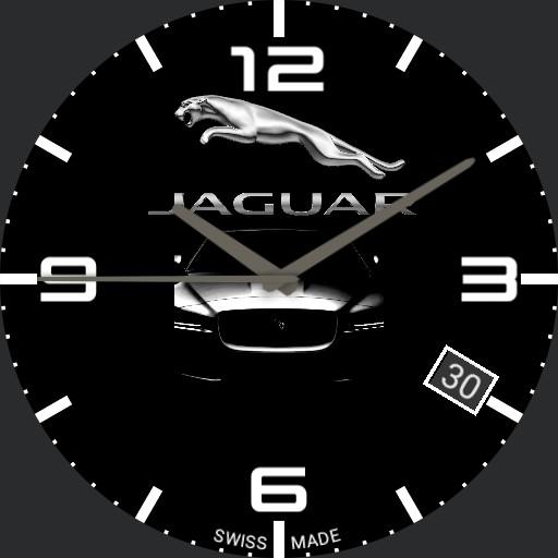 Jaguar  Copy