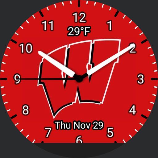 University of Wisconsin Logo Watch Copy