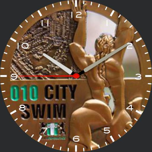 010 City Swim Watch donatie
