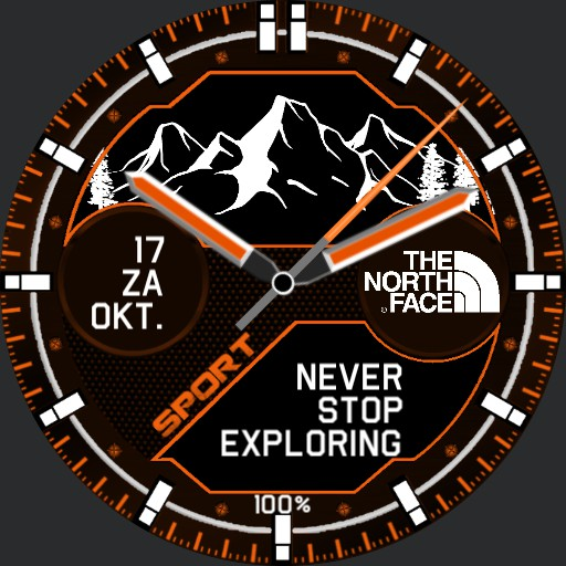 The North Face Mountains Orange