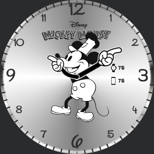 Covy Mickey mouse ok