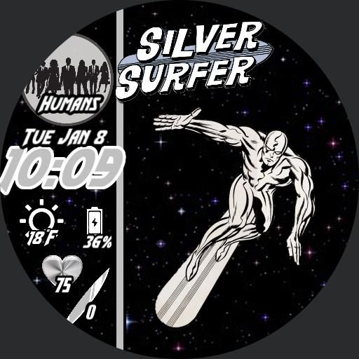 The Silver Guardian 12h