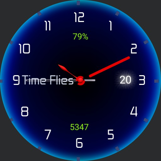 Time Flies Copy