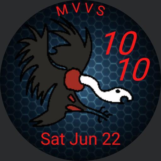 Vulture Squadron