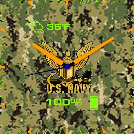 US Navy green camo