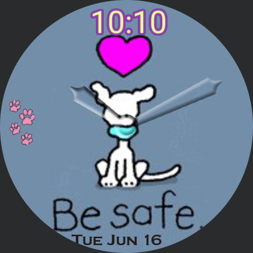 My dog keep safe