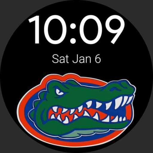 Florida Gators simple design