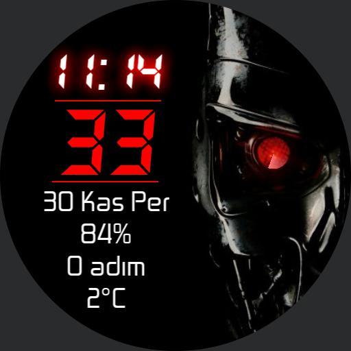 Terminator v2.0