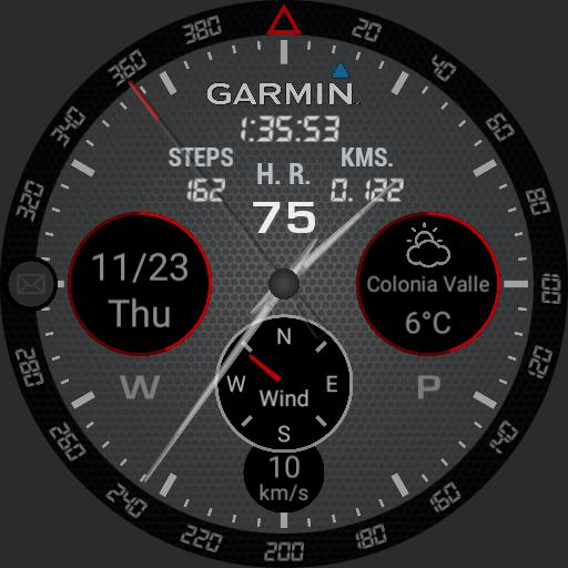Garmin full info grey/red
