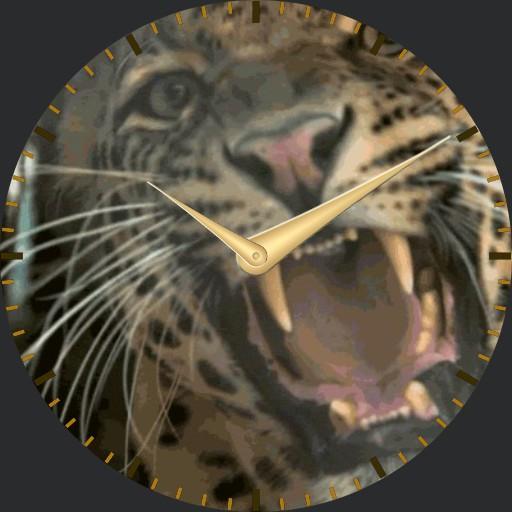 Leopard - plwren