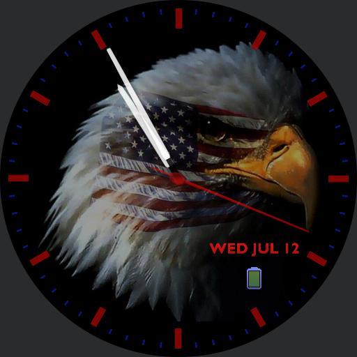 USA Bald Eagle face