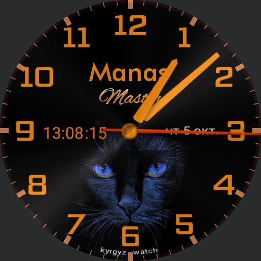 Manas master  cat