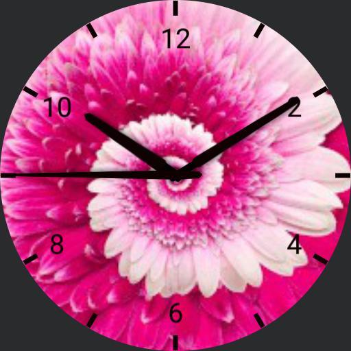 Pink Rotating Flower