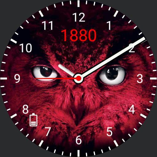 rafc owl